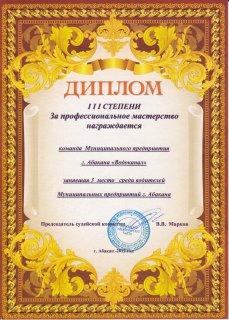 Vodit2012.jpg